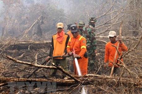 Bị cách chức nếu không thể dập tắt cháy rừng