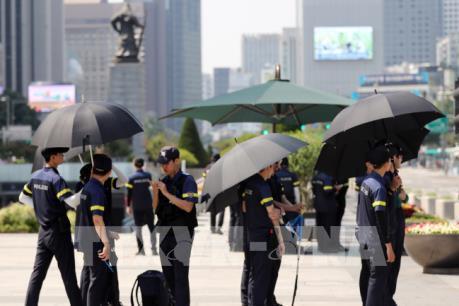 Hà Lan có thêm gần 400 người người thiệt mạng vì nắng nóng kỷ lục