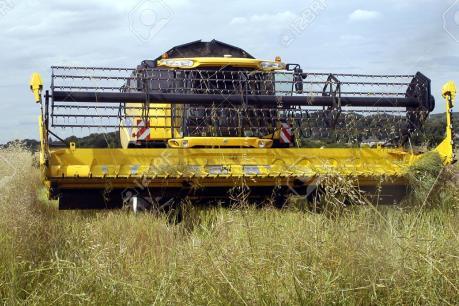 Máy gặt có khả năng nhận dạng và thu hoạch nông sản tự động
