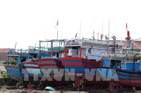 Cấp phép cho tàu cá dài từ 15m trở lên đang gặp khó