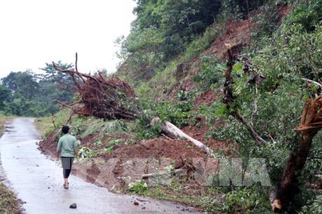 Bị ngập lụt nghiêm trọng, Nhà máy thủy điện Đắk Sin 1 phải dừng hoạt động