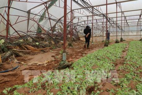 Lâm Đồng: Mưa giảm, nước rút nhiều ở những nơi xảy ra ngập lụt