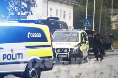 Na Uy: Nổ súng tại thánh đường Hồi giáo