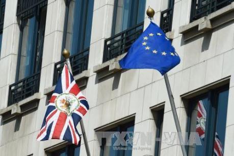 Các nghị sĩ Anh sẵn sàng yêu cầu tòa án buộc thủ tướng trì hoãn Brexit