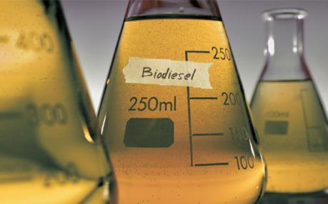 EU áp thuế bổ sung với dầu diesel sinh học Indonesia