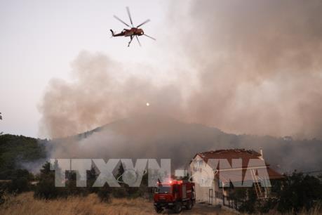 Hy Lạp ban bố tình trạng khẩn cấp về cháy rừng tại đảo Evia