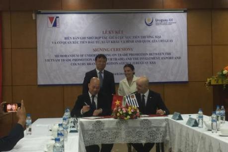 Cơ hội hợp tác thương mại giữa Việt Nam và Uruguay
