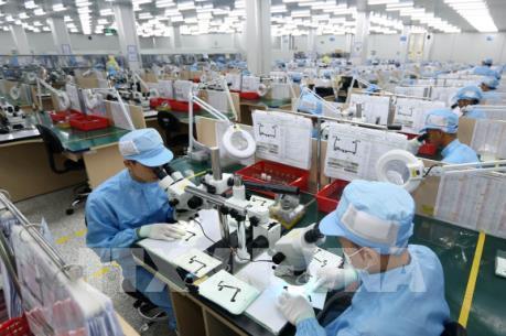 TP.HCM gia tăng số doanh nghiệp thành lập và dự án FDI cấp mới