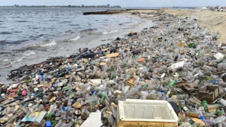 Nhật Bản nghiên cứu cơ chế rác nhựa gây ô nhiễm hệ sinh thái biển