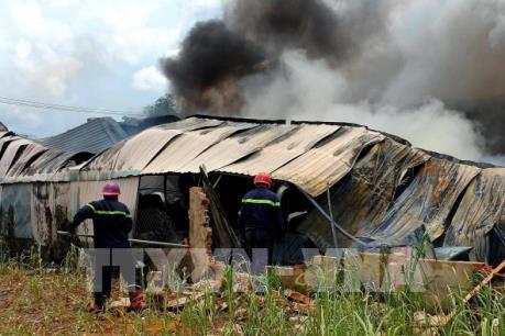 Hàng trăm m2 nhà xưởng ở Hóc Môn bị thiêu rụi
