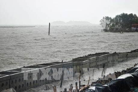 Bộ trưởng Bộ Kế hoạch và Đầu tư kiểm tra tình hình sạt lở bờ biển tại Cà Mau