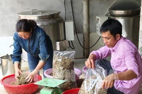 Người Việt ưu tiên dùng hàng Việt: Động lực đổi mới doanh nghiệp