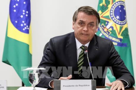 Lý do tổng thống Brazil không dự hội nghị thượng đỉnh khu vực về Amazon