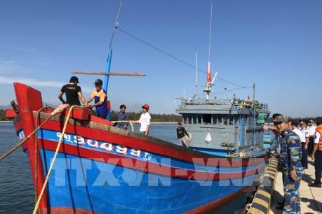 Tàu cá không đăng kí, đăng kiểm vẫn ra khơi khai thác thủy sản