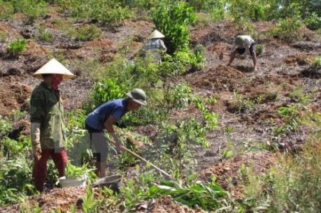 Nghị quyết về ổn định dân di cư tự do và quản lý sử dụng đất nông lâm trường