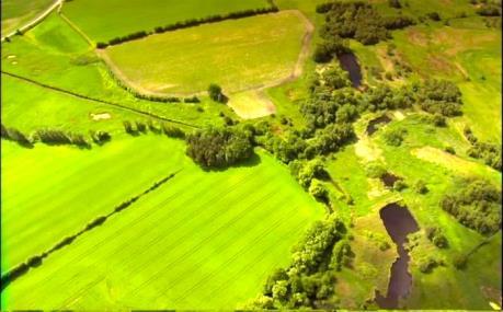"""Đan Mạch đầu tư tìm giải pháp cho nông nghiệp """"Xanh"""""""