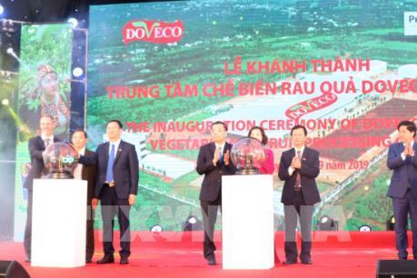 Khánh thành Trung tâm chế biến rau quả Doveco Gia Lai lớn nhất Tây Nguyên