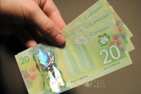 """Người dân Canada lo ngại """"thể trạng"""" nền kinh tế và tài chính cá nhân"""