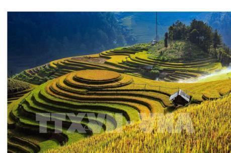 CNBC: Mù Cang Chải - Điểm du lịch tuyệt vời cho khách quốc tế