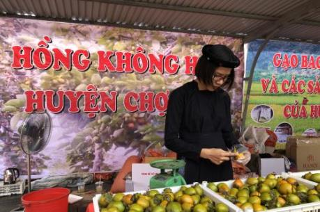 Khai mạc Tuần lễ nông sản sạch Bắc Kạn tại Hà Nội