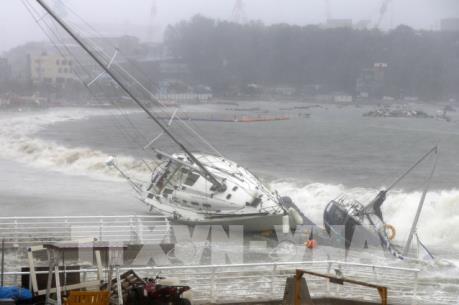 Bão Tapah đổ bộ Nhật Bản, hàng trăm chuyến bay bị hủy