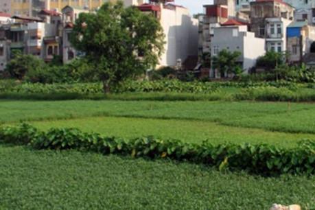 Sai phạm trong quản lý nhà nước về đất đai và môi trường tại tỉnh Thái Bình