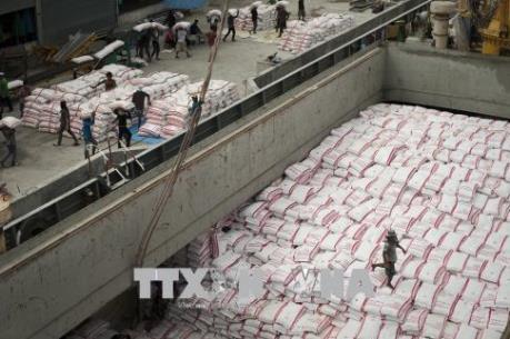 Đồng bath mạnh lên, xuất khẩu gạo của Thái Lan gặp khó