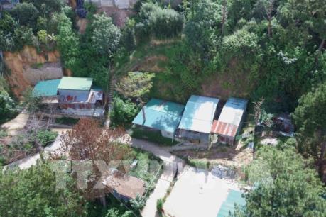 """Nhiều ngôi nhà không phép """"mọc"""" giữa rừng thông Đà Lạt"""