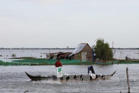 Mực nước sông Cửu Long sẽ đạt đỉnh lũ vào ngày 1 - 2/10