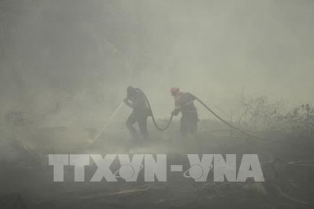 Indonesia sẽ chi thêm 113 triệu USD để dập tắt các đám cháy rừng