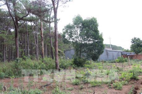 Sửa đổi Nghị định của Chính phủ về thu tiền sử dụng đất