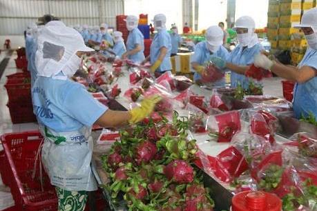 Xuất siêu nông, lâm, thủy sản tăng gần 49%