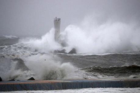 Vụ chìm tàu Panama do bão Hagibis: Một thủy thủ Việt Nam đã được cứu