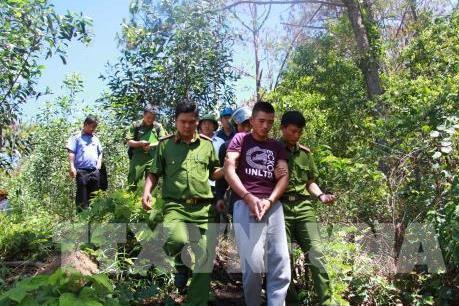 Lâm Đồng kỷ luật người đứng đầu đơn vị vì thiếu trách nhiệm vụ phá rừng
