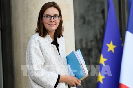 """Pháp sẵn sàng gia hạn """"kỹ thuật"""" vài ngày đối với tiến trình Anh rời EU"""