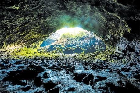 Thực hư thông tin hổ xuất hiện gần hang động núi lửa Krông Nô