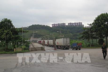 Tình trạng ùn tắc xe chở thanh long tại cửa khẩu Lào Cai đã được giải quyết?