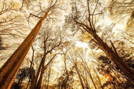 Những điểm đến kì ảo như trời Tây giữa lòng xứ Nghệ