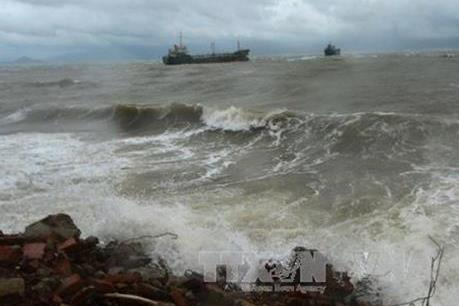 Bão số 8 cách quần đảo Hoàng Sa 450 km về phía Đông, giật cấp 10