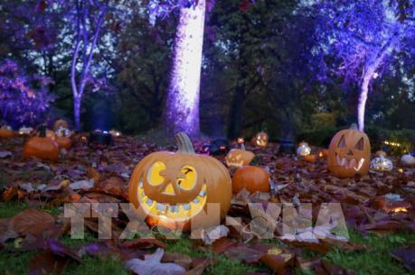 """Bài toán """"giải cứu"""" bí ngô và giảm rác nhựa sau Halloween"""