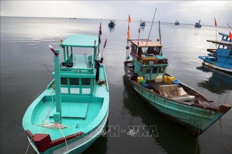 """Khắc phục """"thẻ vàng"""" IUU: Quản lý giám sát chặt hành trình tàu cá"""