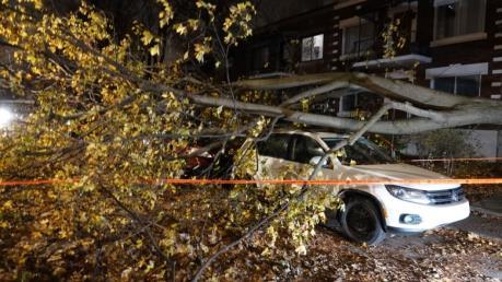 Canada: Bão lớn quét qua Quebec gây mất điện trên diện rộng