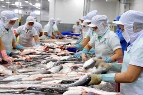 Lý do cá tra chưa được tiêu dùng phổ biến tại thị trường nội địa - kết quả xổ số đồng tháp