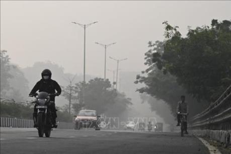 Lốp xe phế thải: Mối nguy hiểm đang rình rập môi trường