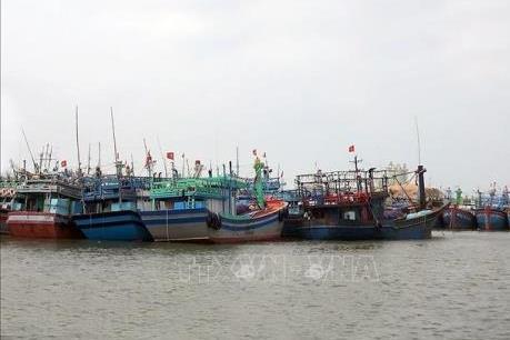 Dự báo thời tiết 3 ngày tới: Từ Quảng Ngãi đến Khánh Hòa ảnh hưởng trực tiếp bão số 6