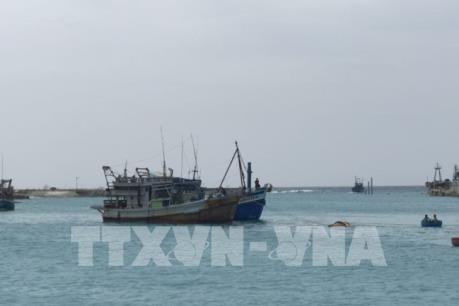 Chiều tối 10/11, bão số 6 giật cấp 11 vào các tỉnh Quảng Ngãi đến Khánh Hoà
