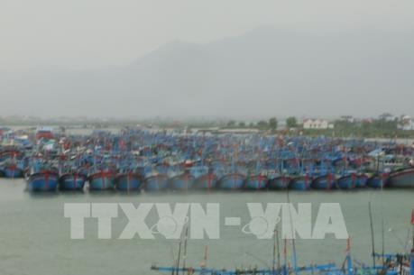 Bão số 6 suy yếu sau khi vào vùng biển gần bờ từ Bình Định đến Khánh Hoà