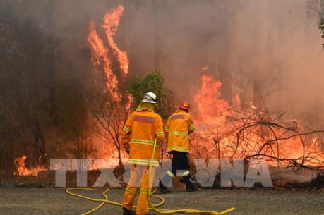 Hai bang miền Đông Australia ban bố tình trạng khẩn cấp vì cháy rừng