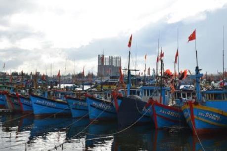 Không để tái diễn hoạt động trái phép tại cảng cá Thọ Quang và bán đảo Sơn Trà