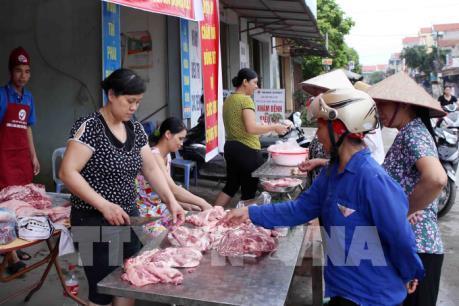 Tp. Hồ Chí Minh lấy ý kiến về mô hình sàn giao dịch lợn